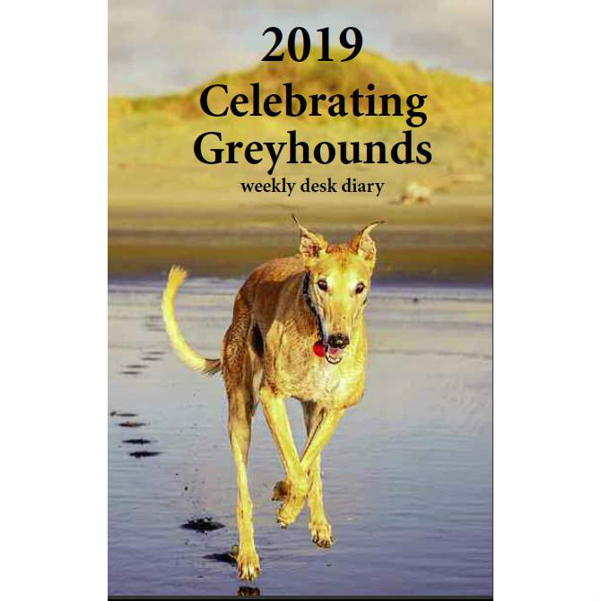2019 Celebrating Greyhounds Desk Calendar