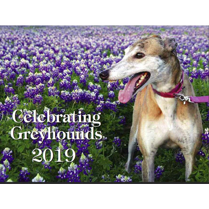 2019 Celebrating Greyhounds Wall Calendar