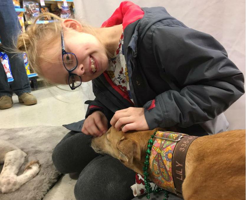 Petsmart Dog Adoption Wilmington Nc