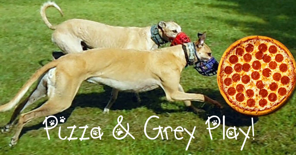 Grey Play Pizza