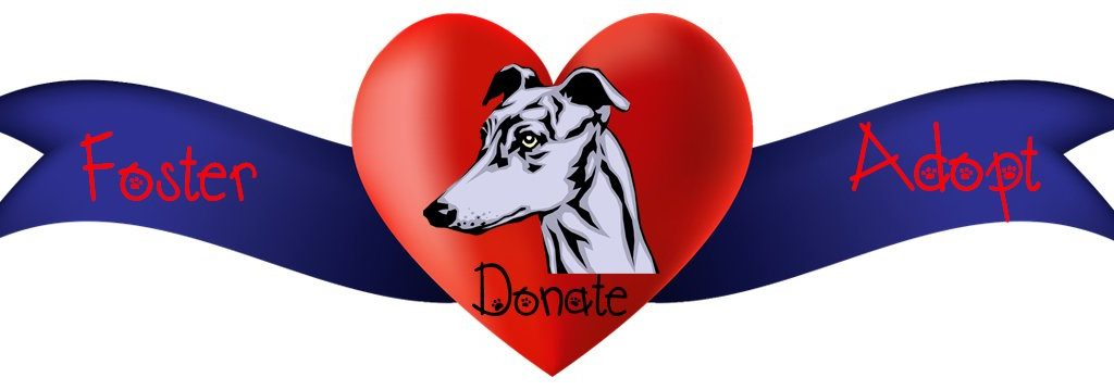 Donate Foster Adopt