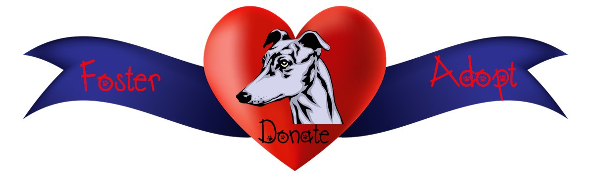Donate Foster Adopt